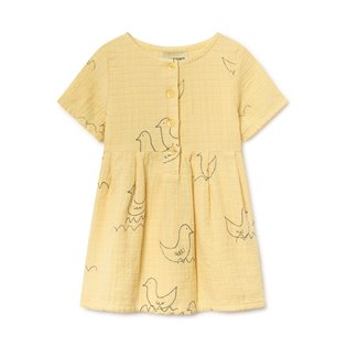 Geese Princess Baby Dress
