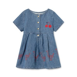 Geese Princess Baby Dress - Denim