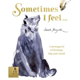 Sometimes I Feel - Book